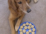 Secret Recipe Club - Peanut Butter & Oatmeal Dog Biscuits