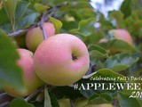 Welcome to Appleweek 2019! #Giveaway #Ad