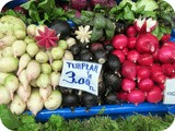 Some Salad Ideas for Radishes or Turp