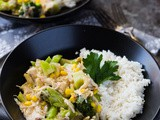 Slow Cooker Broccoli and Chicken