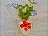 Alpine strawberries and Forget me not