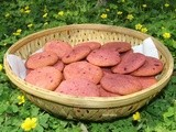 Colourfully healthy beet cookies, a visit to corbett's land and bird watching
