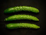 Summer kyuri – the refined texture of the japanese cucumber