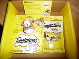 Temptations Snacky Mouse Cat Toy