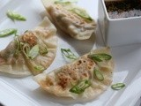Vegetable Ginger Pot Stickers