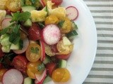 Meyer Lemon, Radish, Cucumber and Tomato Salad with Citrusy Dressing