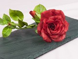 Long Stem Roses From Bud To Wired Petals Video Series