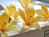 How to Make Gum Paste Lilies (Tutorial)