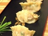 Japanese Gzoya Dumplings Recipes: Little Packages, Big Comfort
