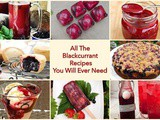 All The Blackcurrant Recipes You Will Ever Need