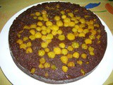 Chocolate Ground Cherry Upside Down Cake