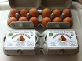 Organic Eggs and a Cornish Holiday Discount