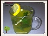 Nannari Lemon Sharbath