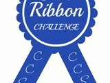 Blue Ribbon Challenge { July } and a few questions answered