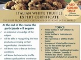 Become a White Truffles Expert - icws Italian White Truffles Course Details