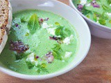 Chilled Cucumber Dill Mint Soup with Feta and Red Onion