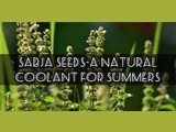 Sabja seeds-a natural coolant for Summers