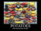 So, What's with the Potatoes