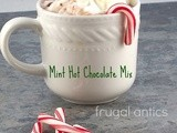 Mint Hot Chocolate Mix: An Easy Christmas Gift