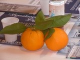 Liguria and citrus fruits. History, recipes, scents, itineraries - La Liguria degli agrumi - Storie ricette profumi itinerari