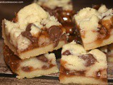 Caramel Butter Bars with Chocolate Chips