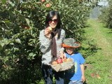 苹果园游记 Picking Apples at Pine Crest Orchard