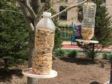 Plastic Bottle Bird Feeder (Recycled Bird Feeder)