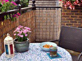 My Summer Balcony & a Recipe for Shrimps in Butter Garlic Sauce