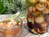 Gifts in a Jar, Let's Make Christmas and Marinated Mushrooms with Herbs