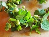 Rambling Autumn Hops, Kent, Stuff on Toast and Perfect Poached Eggs