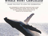 Feel the goodness again: Whale hunt cancelled