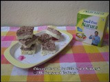 Chocolate and Vanilla 2-in-1 Sondesh / Sugar Free Dessert Challenge / Dessert with Sugarfree Natura