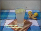 Ginger Lemon Soda/Sparkling Ginger Lemonade/Ginger Lemon Fizz