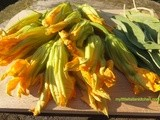 Makes a good aperitive: fried courgette's flowers and sage