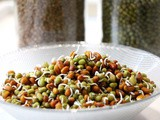 How to sprout beans, legumes, nuts, seeds and grains