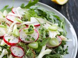 Radish and Fennel Salad with lemon dressing