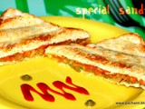 Vegetable sandwich \ special sandwich