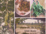 Down on the Farm…Spicy Pork with Stinky Beans( Mu Baan Phat Prik Sa Tor)