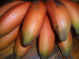 Fruity Friday…The Red Banana