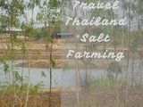 Salt Farming in Northern Thailand