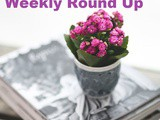 Smorgasbord Blog Magazine – Weekly Round Up – Cathaoireacha, Cats, More Cats, Irises and Beans