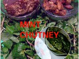 Mint chutney recipe (with tamarind and ghost chilli)