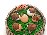 Kitkat Cake with Egg shell Brownies and Happy Birthday to Scratching Canvas