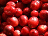 Best Ever Cranberry Sauce — Hall of Fame version