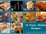 10 Fryer Chicken recipes