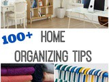 100+ Getting Your Home Organized Tips