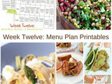 Easy to Follow Meal Plan {week 12}
