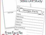 Georgia State Fact File Worksheets