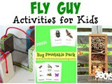 Over 20 Fly Guy Activities for Kids