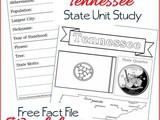 Tennessee State Fact File Worksheets